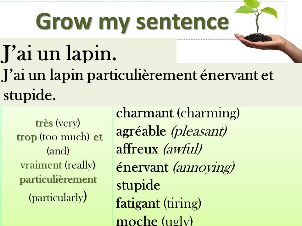 Grow my sentence J'ai un lapin.