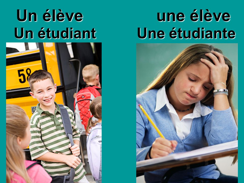 Un élève une élève Une étudiante Un étudiant