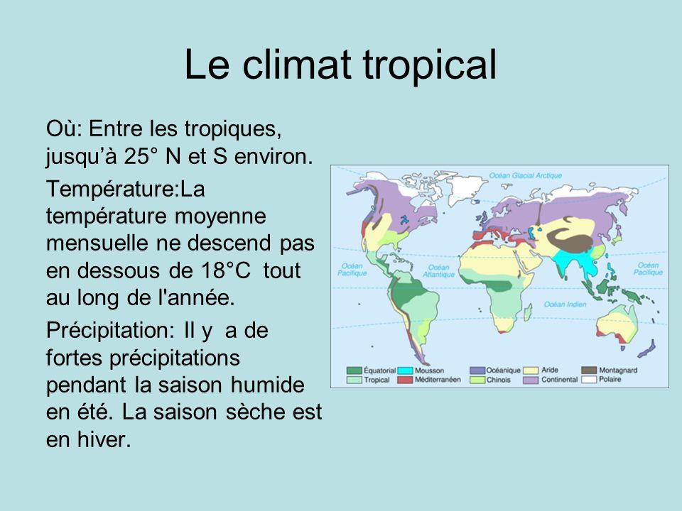 Le climat tropical Où: Entre les tropiques, jusqu'à 25° N et S environ.