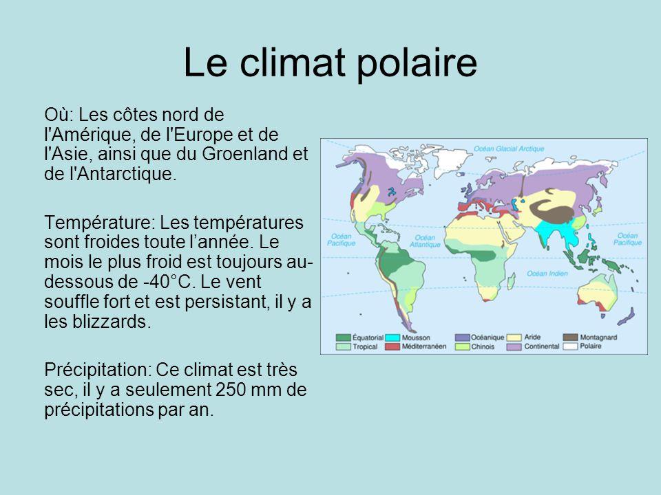 Le climat polaire Où: Les côtes nord de l Amérique, de l Europe et de l Asie, ainsi que du Groenland et de l Antarctique.