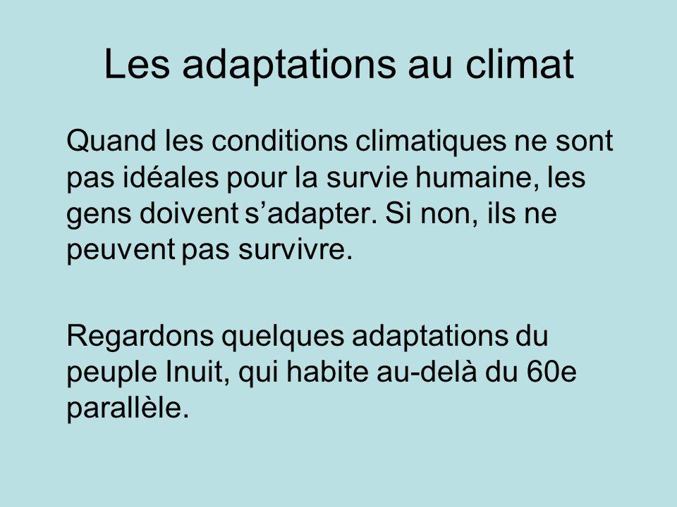 Les adaptations au climat