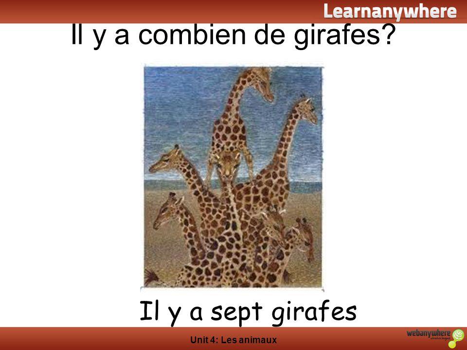 Il y a combien de girafes