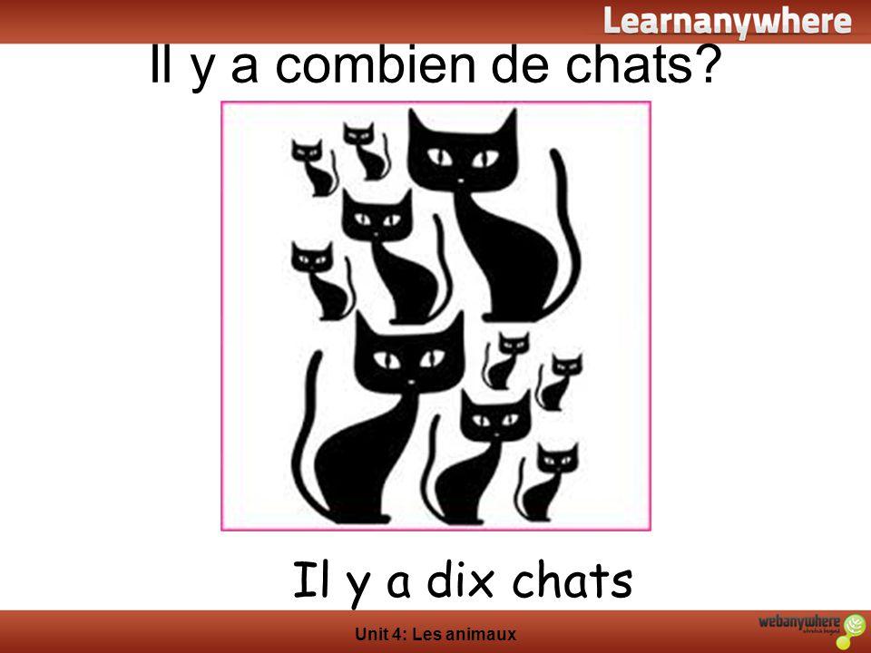 Il y a combien de chats Il y a dix chats Unit 4: Les animaux