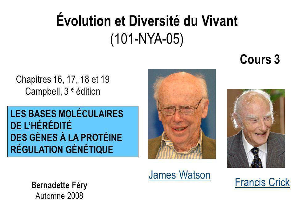 Évolution et Diversité du Vivant