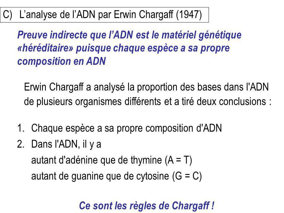 C) L'analyse de l'ADN par Erwin Chargaff (1947)