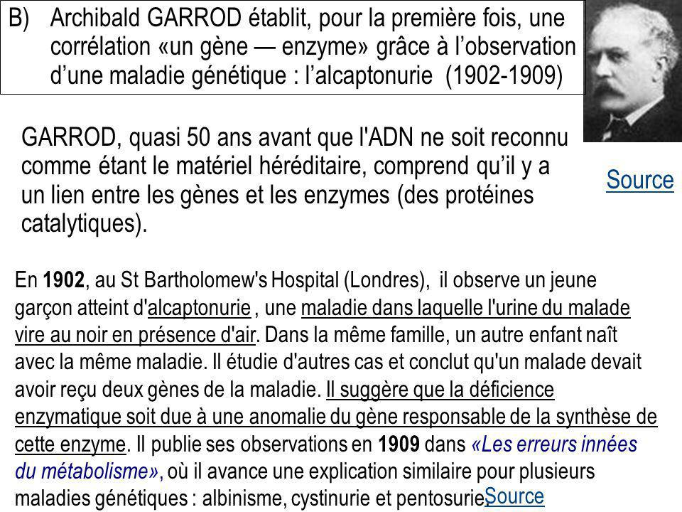 B) Archibald GARROD établit, pour la première fois, une corrélation «un gène — enzyme» grâce à l'observation d'une maladie génétique : l'alcaptonurie (1902-1909)