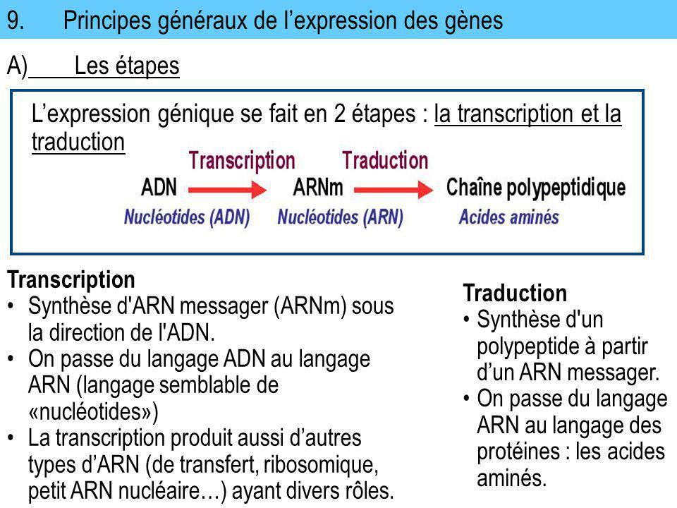 9. Principes généraux de l'expression des gènes