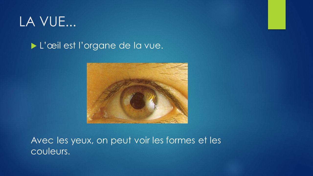 LA VUE... L'œil est l'organe de la vue.
