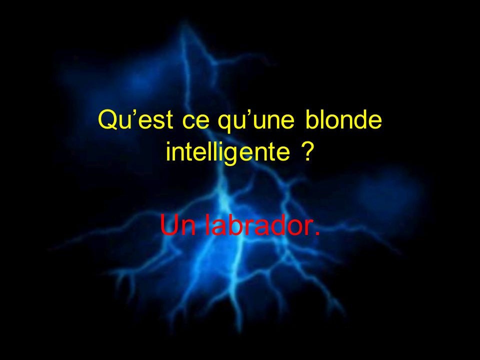Qu'est ce qu'une blonde intelligente