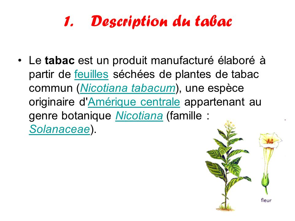 Description du tabac