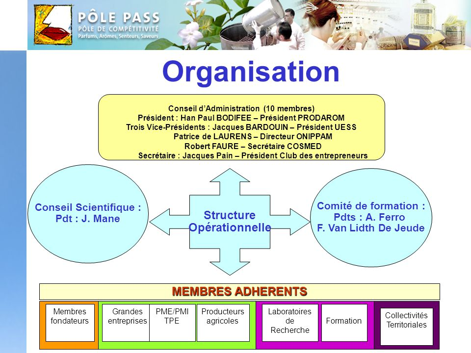 Organisation Structure Opérationnelle MEMBRES ADHERENTS