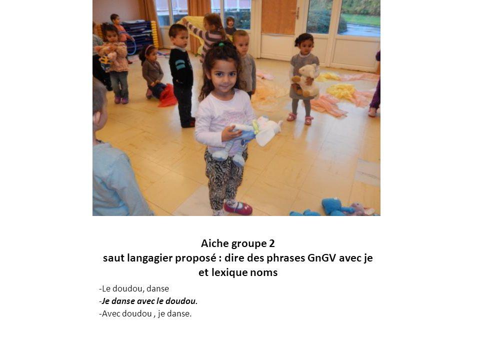 Aiche groupe 2 saut langagier proposé : dire des phrases GnGV avec je et lexique noms