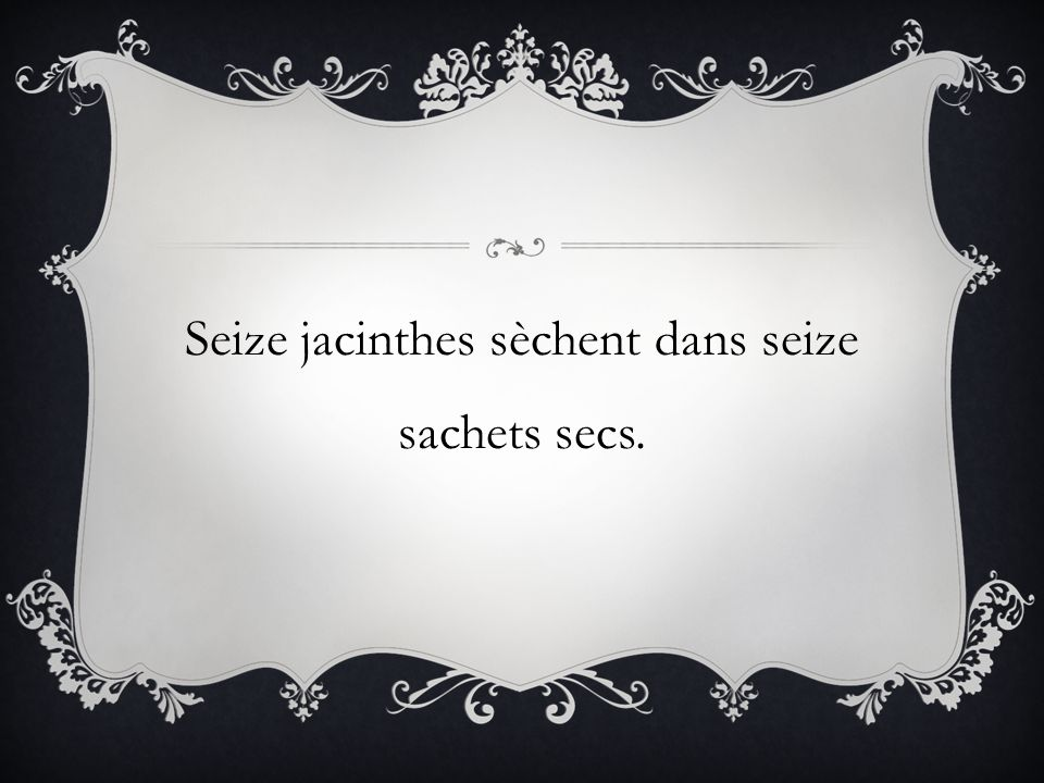 Seize jacinthes sèchent dans seize sachets secs.