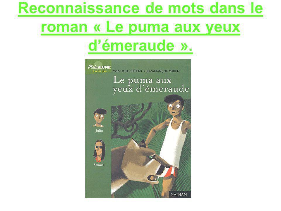 Reconnaissance de mots dans le roman « Le puma aux yeux d'émeraude ».