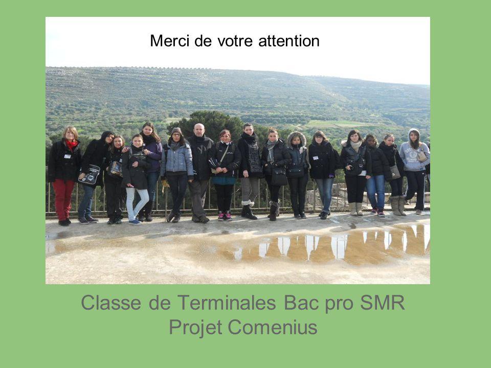 Classe de Terminales Bac pro SMR Projet Comenius