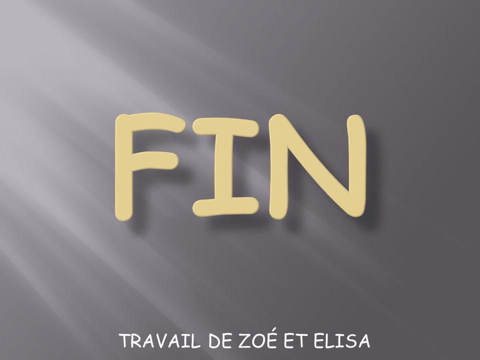 FIN TRAVAIL DE ZOÉ ET ELISA