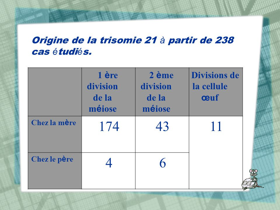 Origine de la trisomie 21 à partir de 238 cas étudiés.