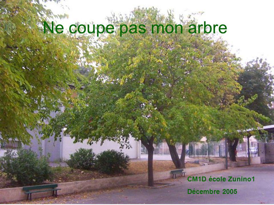 Ne coupe pas mon arbre CM1D école Zunino1 Décembre 2005