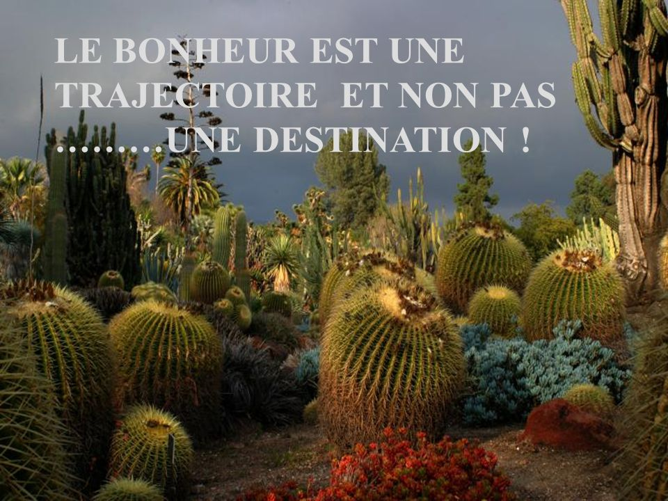 LE BONHEUR EST UNE TRAJECTOIRE ET NON PAS ………UNE DESTINATION !