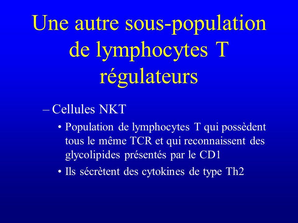 Une autre sous-population de lymphocytes T régulateurs