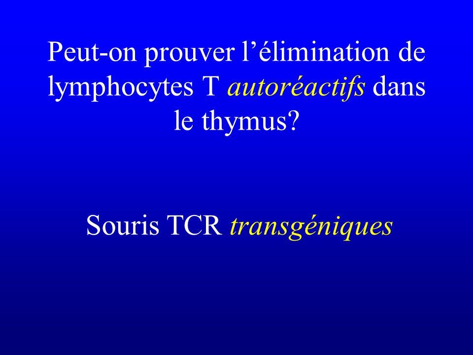 Souris TCR transgéniques