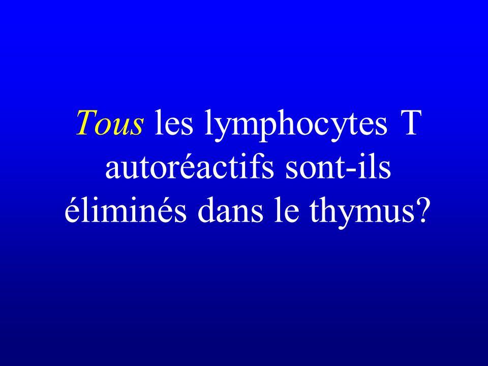 Tous les lymphocytes T autoréactifs sont-ils éliminés dans le thymus