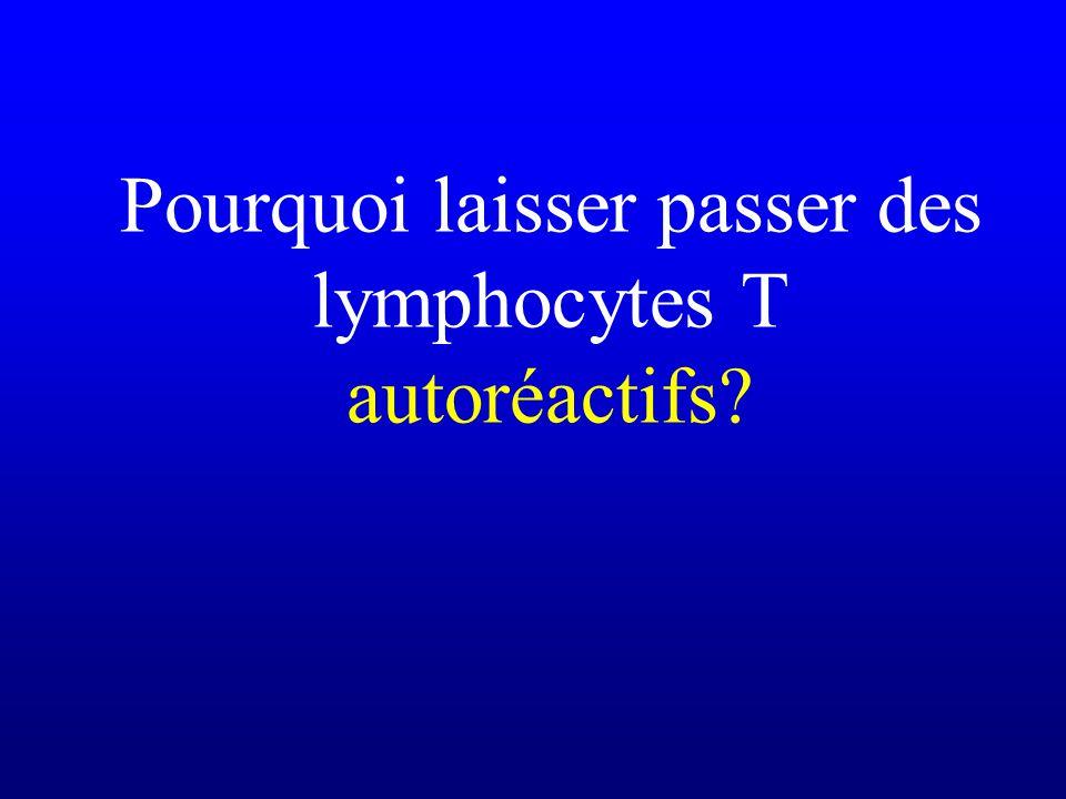 Pourquoi laisser passer des lymphocytes T autoréactifs