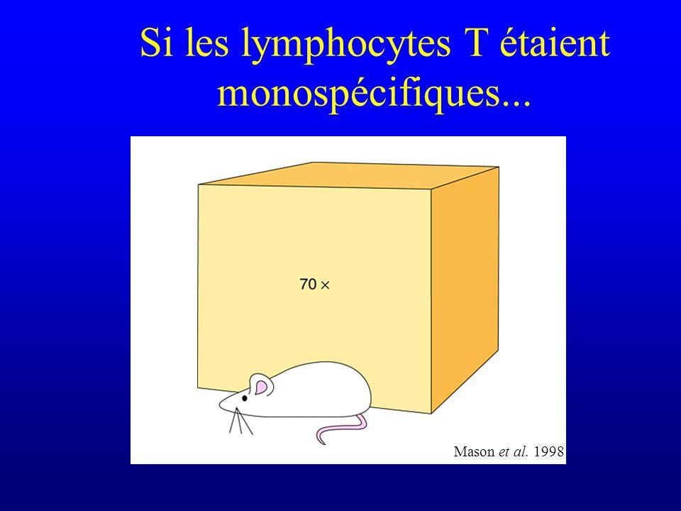 Si les lymphocytes T étaient monospécifiques...