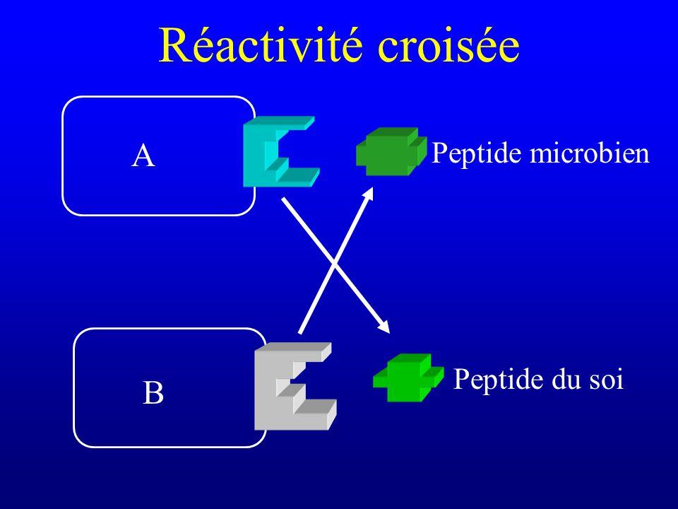 Réactivité croisée A Peptide microbien Peptide du soi B