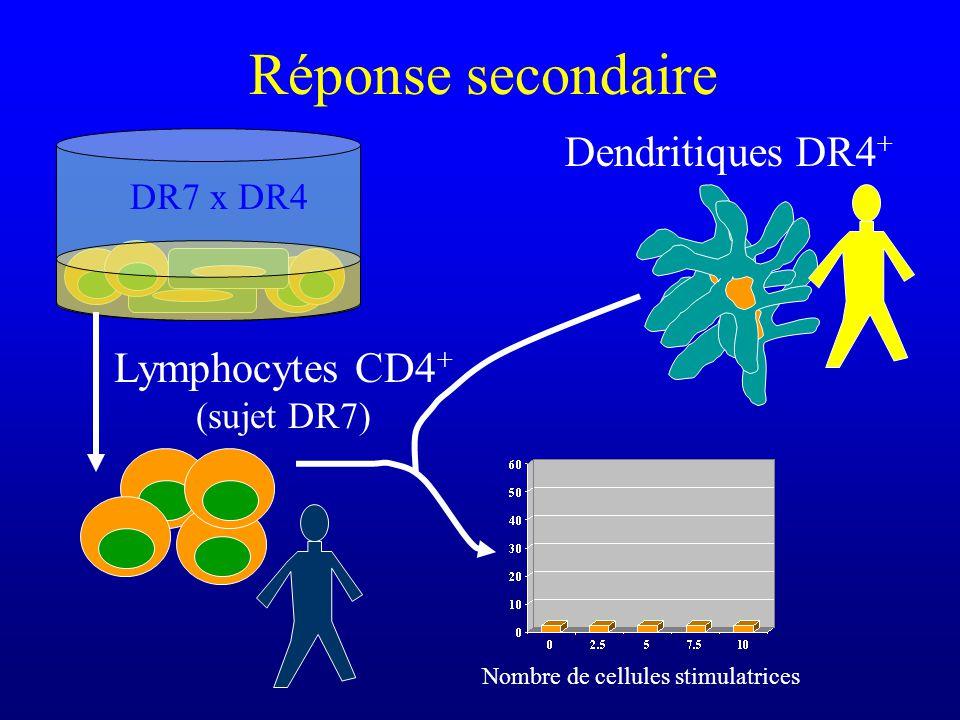 Nombre de cellules stimulatrices