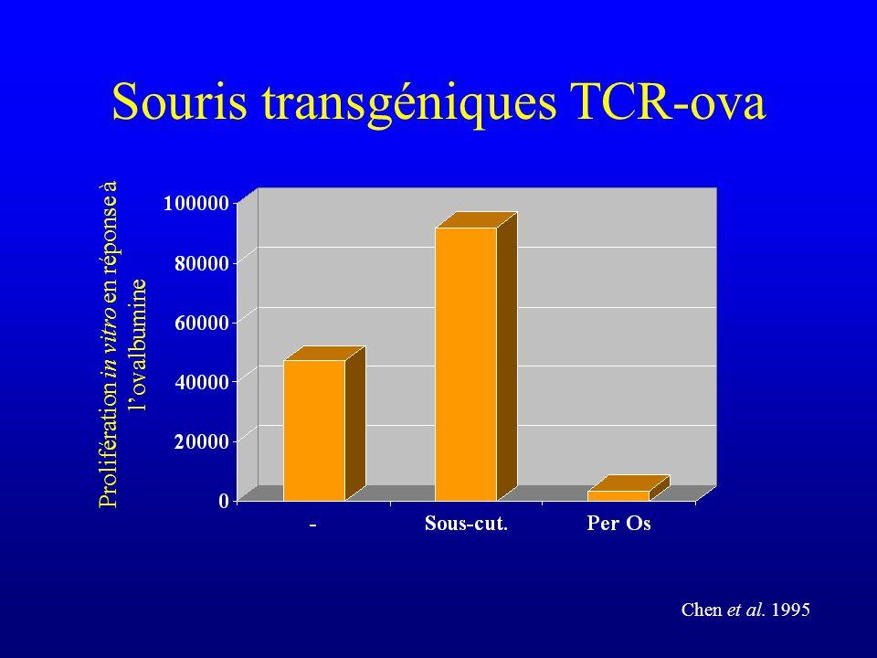 Souris transgéniques TCR-ova