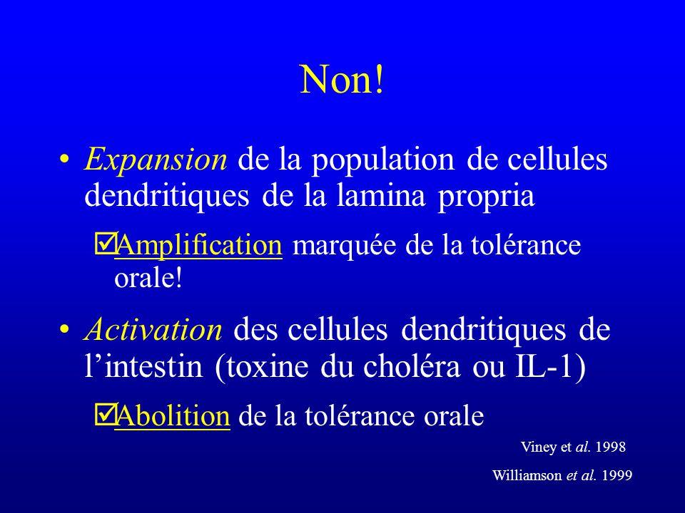 Non! Expansion de la population de cellules dendritiques de la lamina propria. Amplification marquée de la tolérance orale!