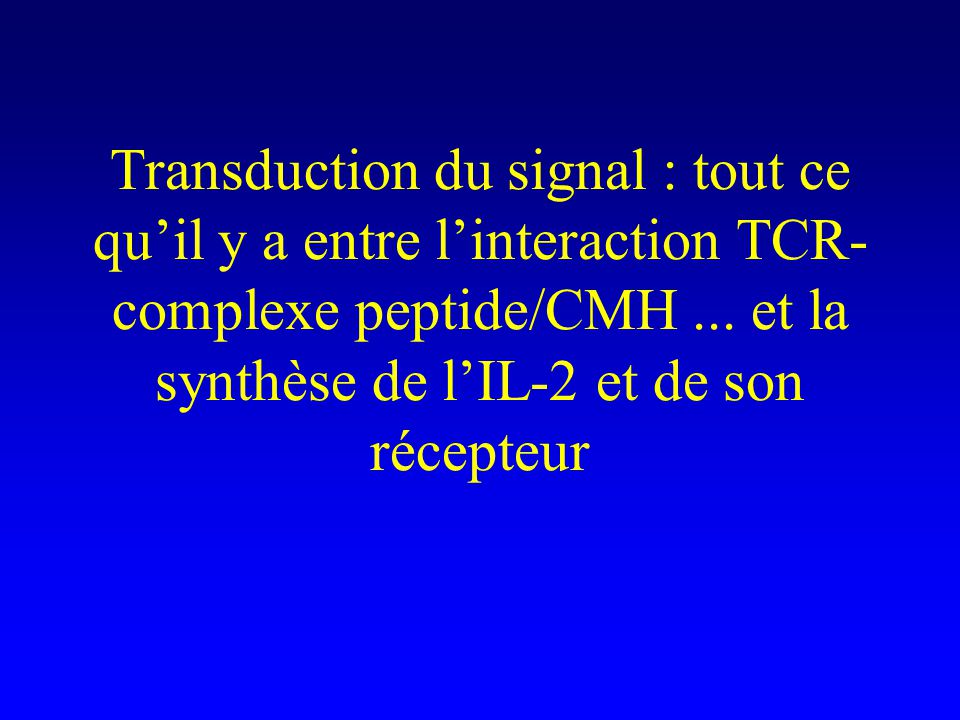 Transduction du signal : tout ce qu'il y a entre l'interaction TCR-complexe peptide/CMH ...