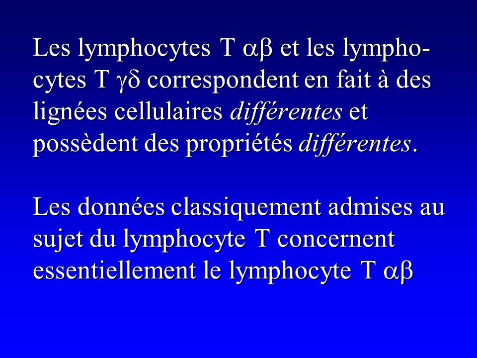 Les lymphocytes T ab et les lympho-cytes T gd correspondent en fait à des lignées cellulaires différentes et possèdent des propriétés différentes.