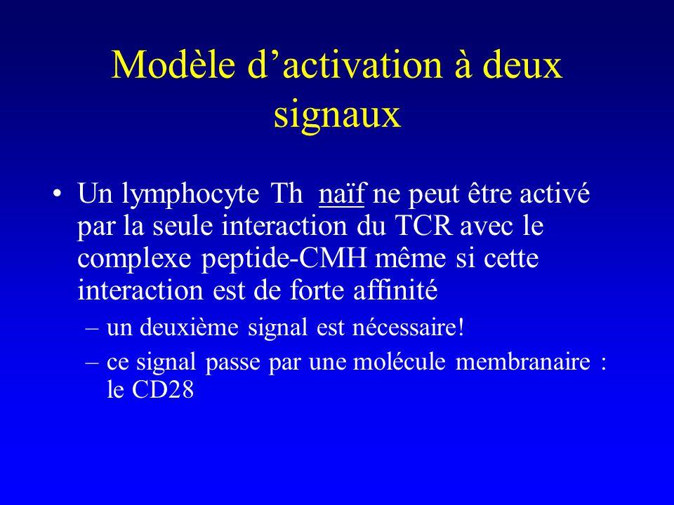 Modèle d'activation à deux signaux