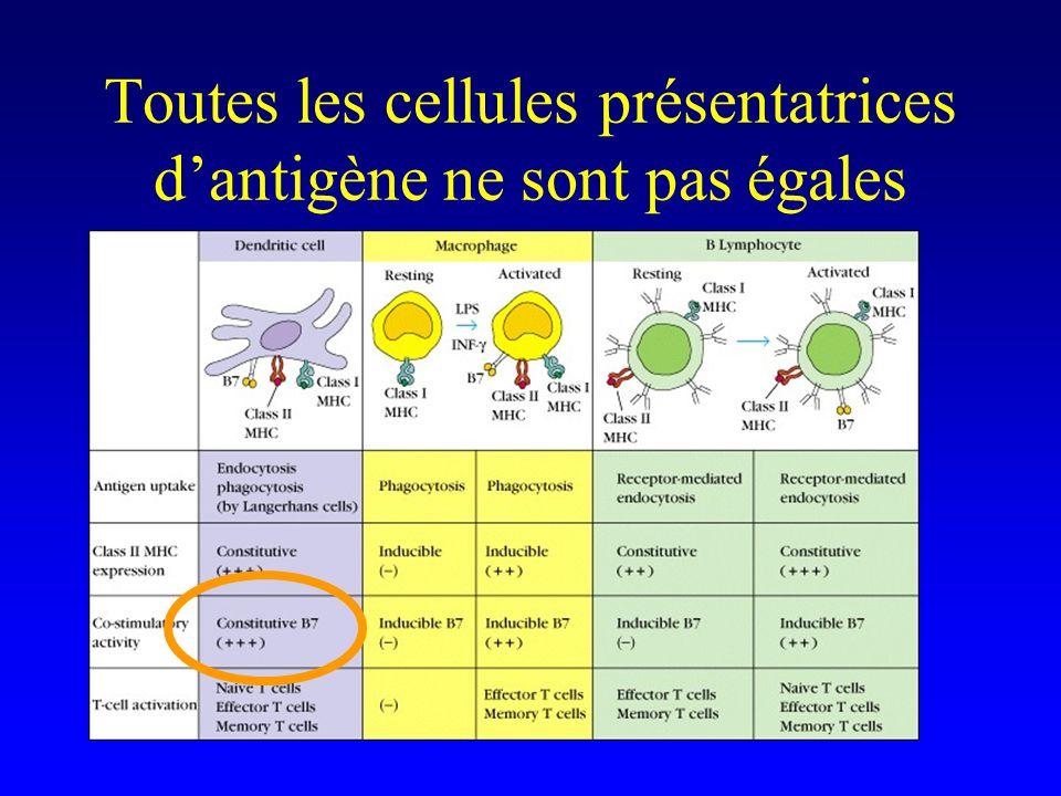 Toutes les cellules présentatrices d'antigène ne sont pas égales