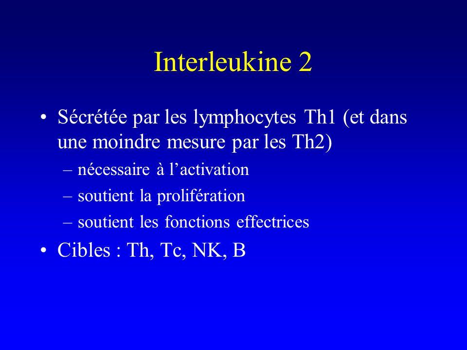 Interleukine 2 Sécrétée par les lymphocytes Th1 (et dans une moindre mesure par les Th2) nécessaire à l'activation.
