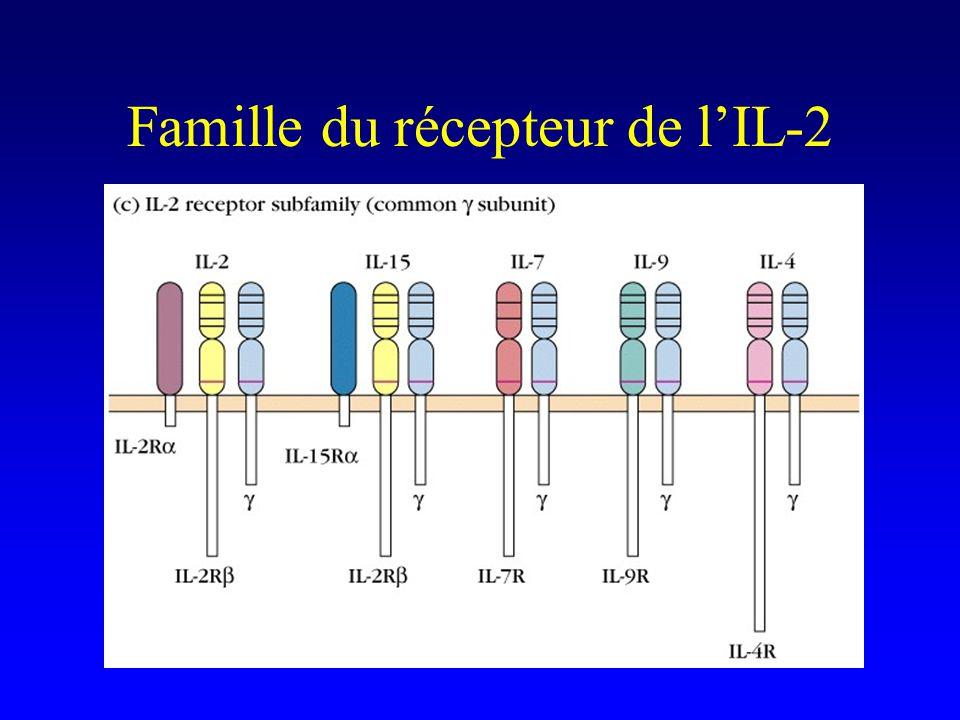 Famille du récepteur de l'IL-2