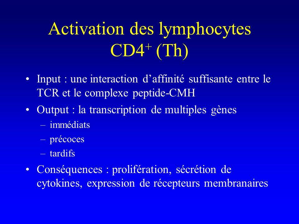 Activation des lymphocytes CD4+ (Th)