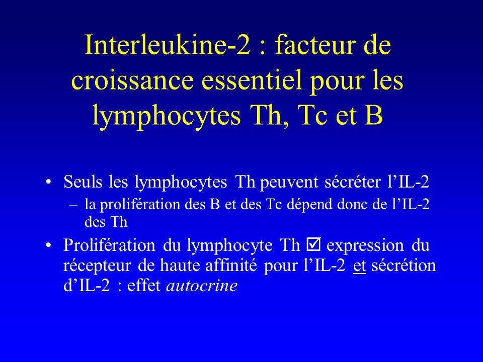 Interleukine-2 : facteur de croissance essentiel pour les lymphocytes Th, Tc et B