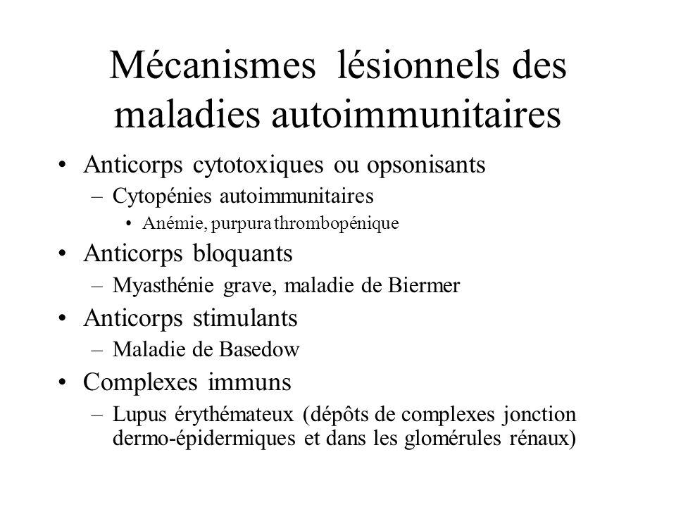 Mécanismes lésionnels des maladies autoimmunitaires