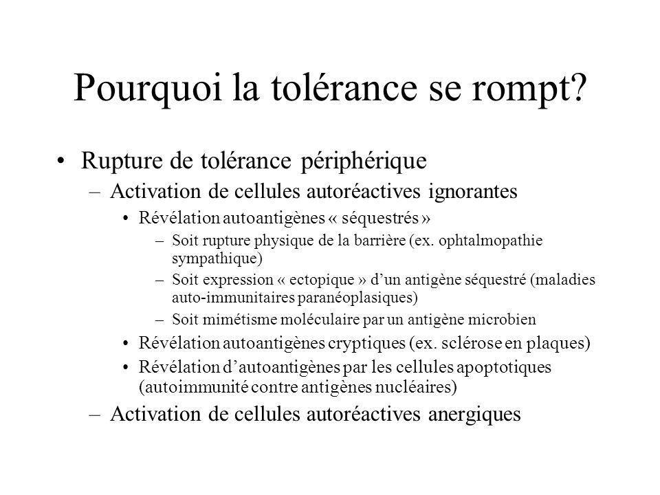 Pourquoi la tolérance se rompt