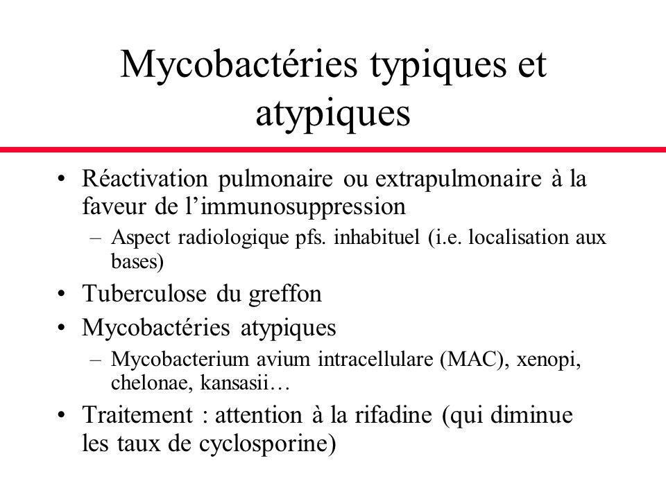Mycobactéries typiques et atypiques