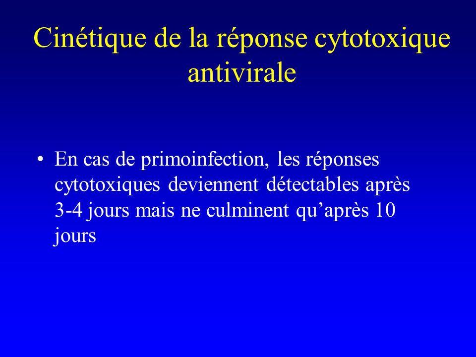 Cinétique de la réponse cytotoxique antivirale