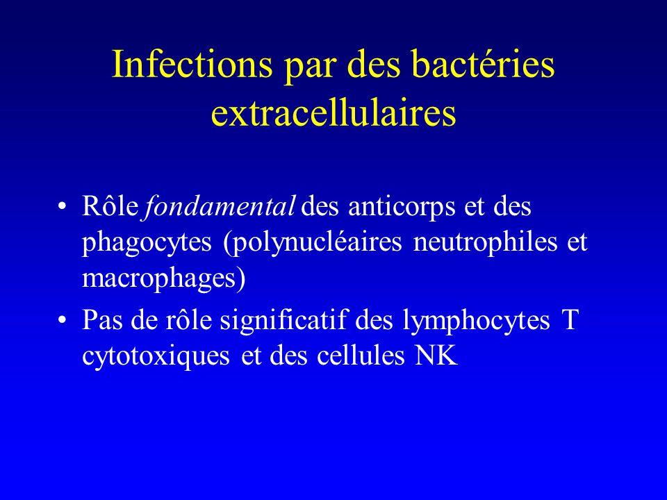 Infections par des bactéries extracellulaires