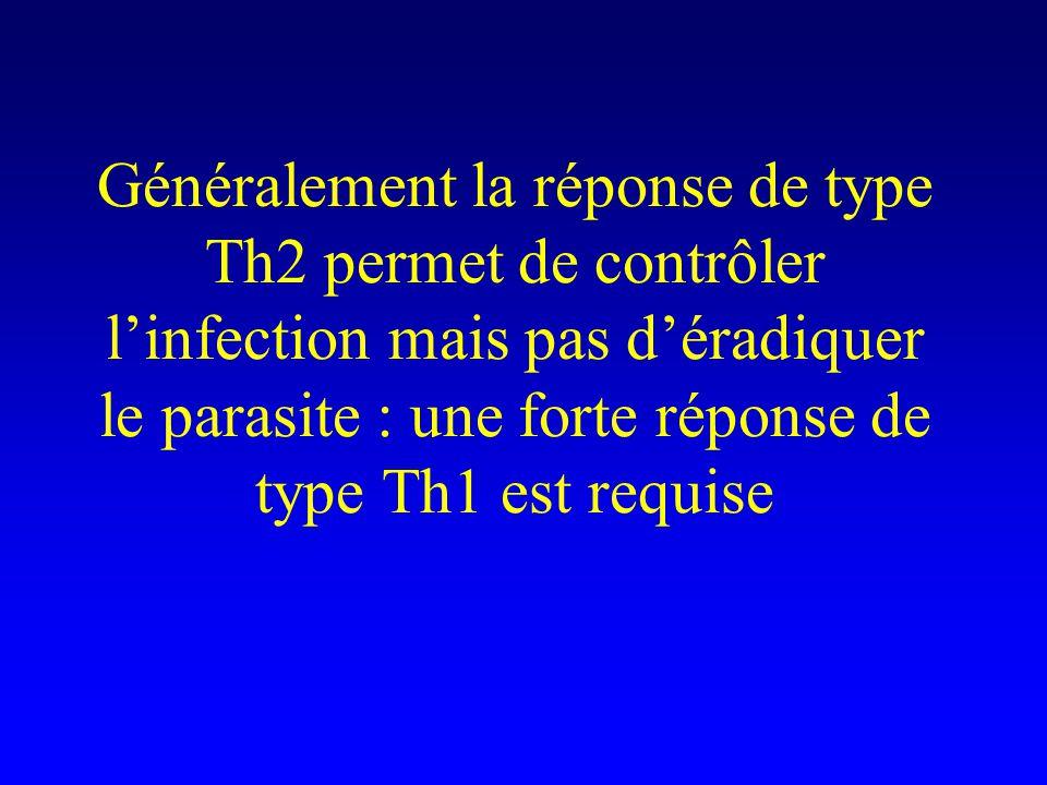 Généralement la réponse de type Th2 permet de contrôler l'infection mais pas d'éradiquer le parasite : une forte réponse de type Th1 est requise