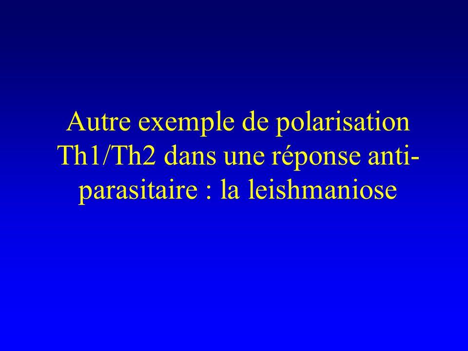 Autre exemple de polarisation Th1/Th2 dans une réponse anti-parasitaire : la leishmaniose