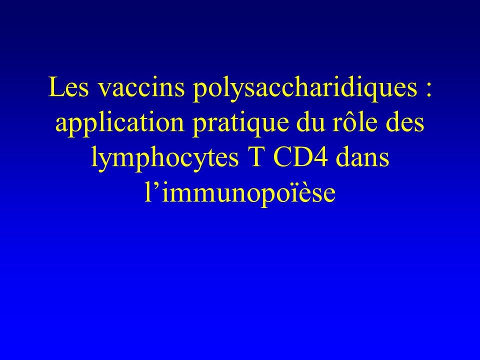 Les vaccins polysaccharidiques : application pratique du rôle des lymphocytes T CD4 dans l'immunopoïèse