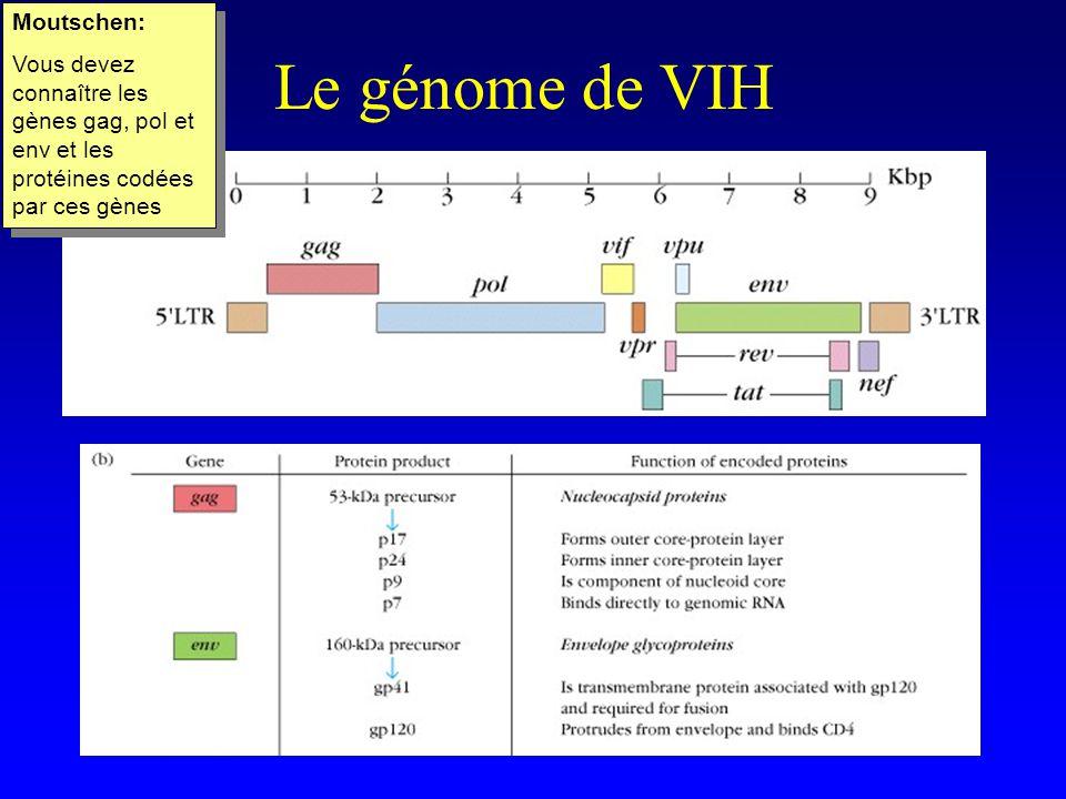 Le génome de VIH Moutschen: