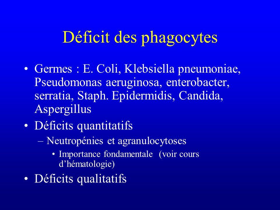 Déficit des phagocytes